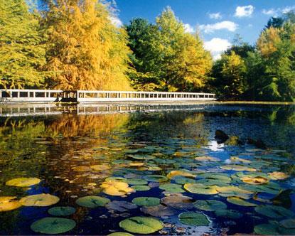 Bon VanDusen Botanical Gardens