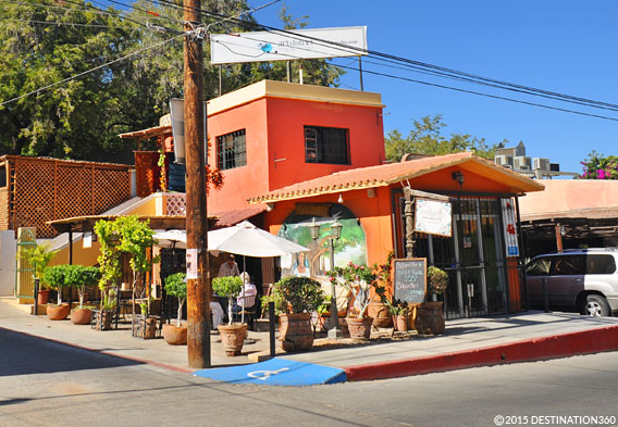 San Jose del Cabo Restaurants