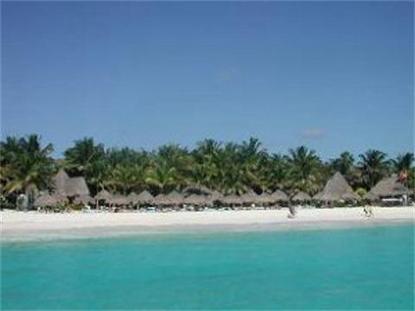 Las Palapas Resort