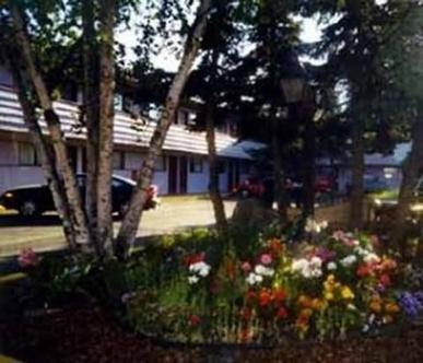 Sourdough Lodge