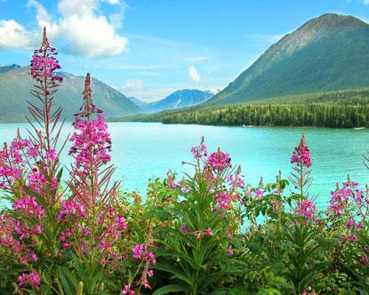 http://www.destination360.com/north-america/us/alaska/images/s/alaska-kenai-river.jpg
