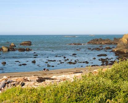 Crescent City Beaches