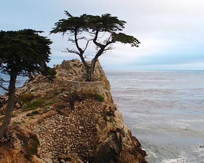 California Scenic Drives