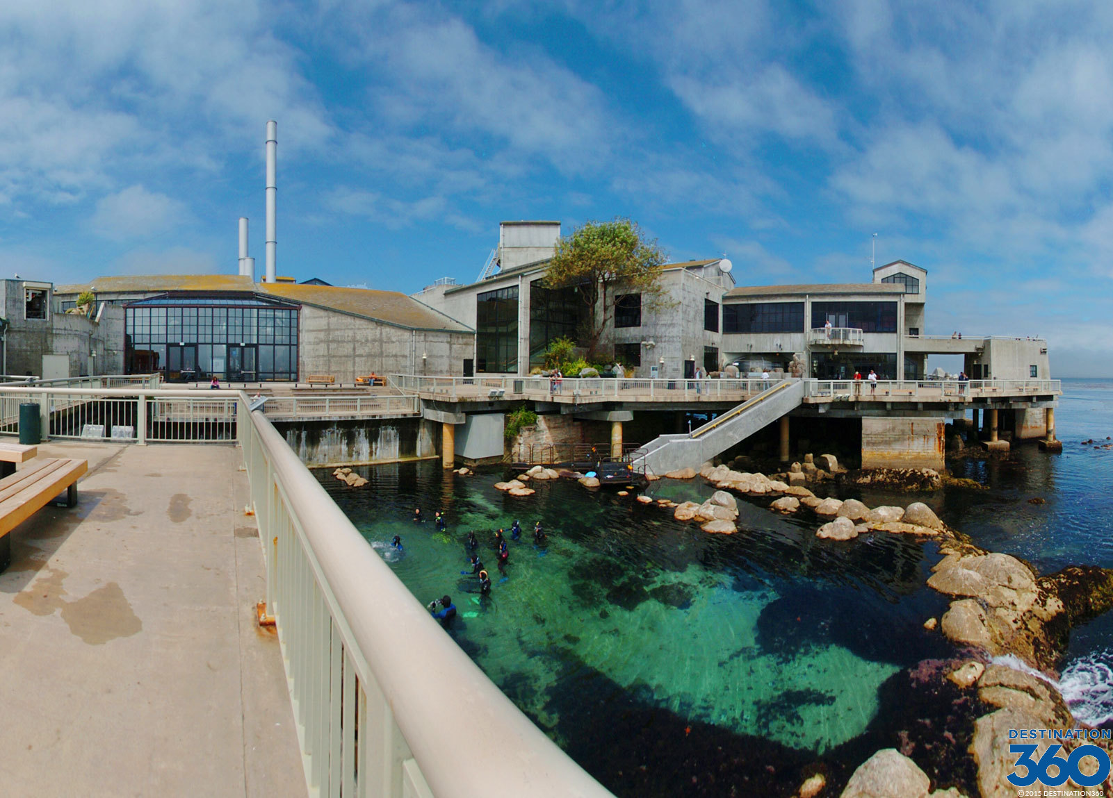 Monterey Aquarium Virtual Tour