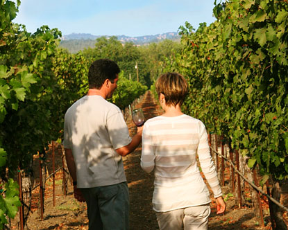 Sonoma Valley Wine Tours