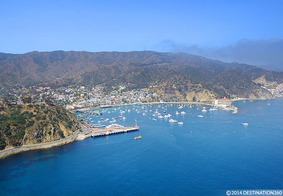 Catalina Island View