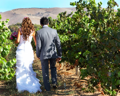 Napa Valley Weddings