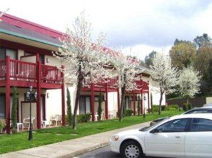 hotels camino california