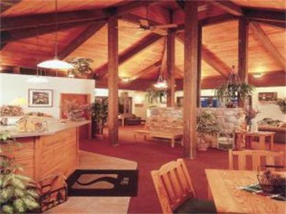 Ski Inn