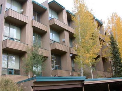 Homestake Condominiums