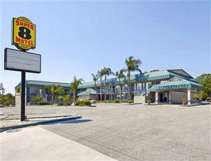 Super 8 Motel   Clearwater/U.S. Hwy 19 N