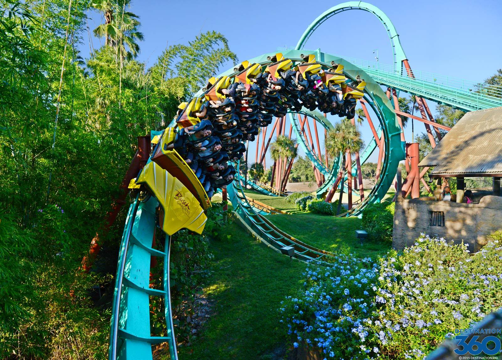 High Quality Busch Gardens Tampa Pictures Gallery