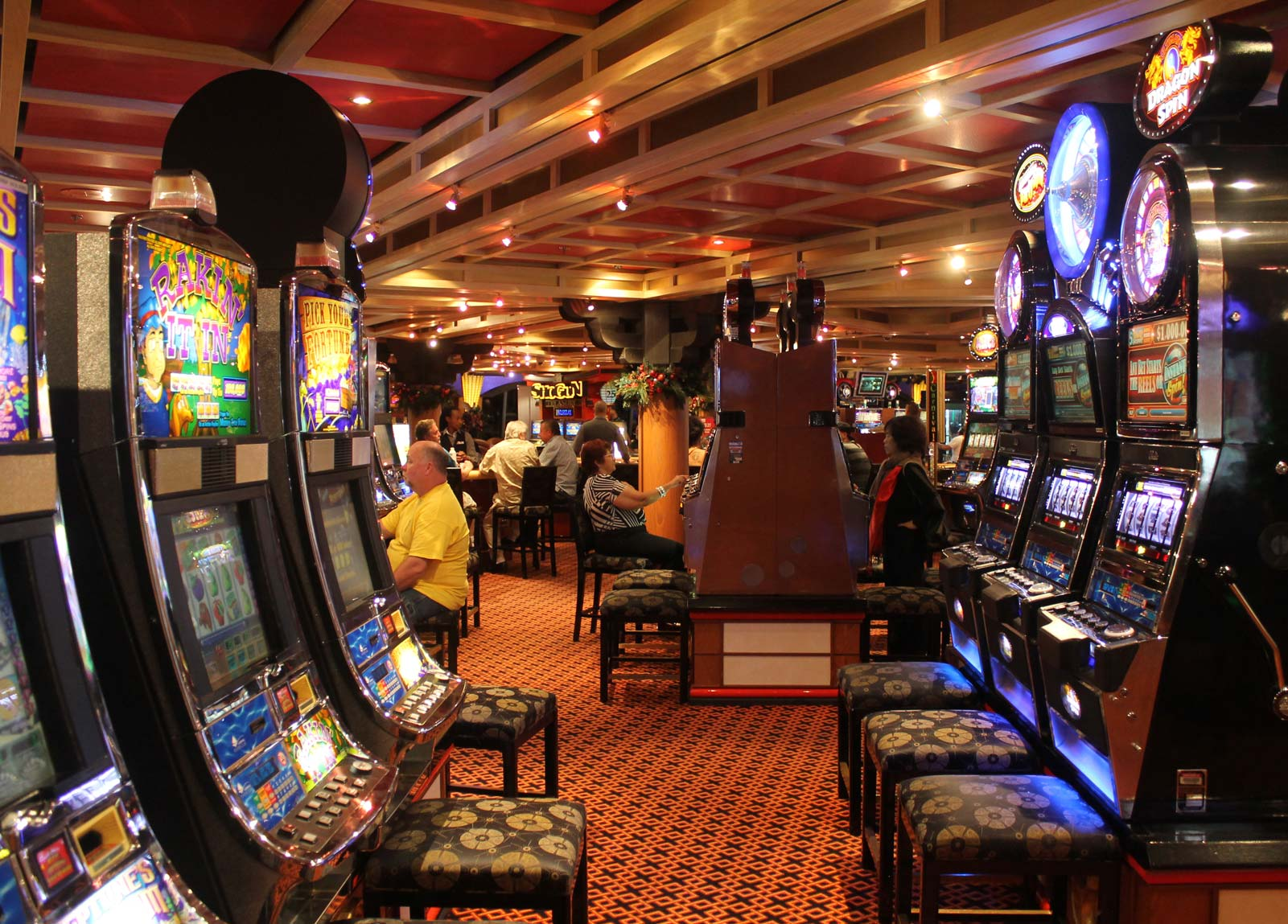 Gambling cruises st. petersburg florida