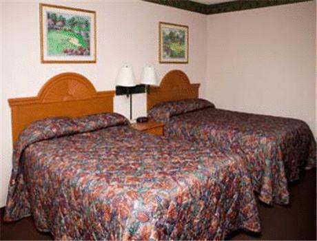 Super 8 Motel   Jacksonville/Central