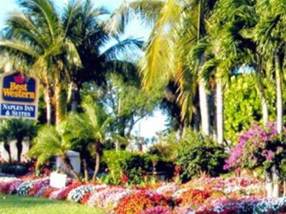Best Western Naples Inn And Suites Naples Deals See