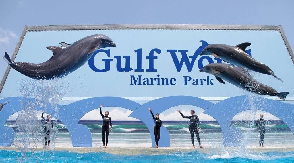 Gulf World Marine Park Panama City Beach Water Park