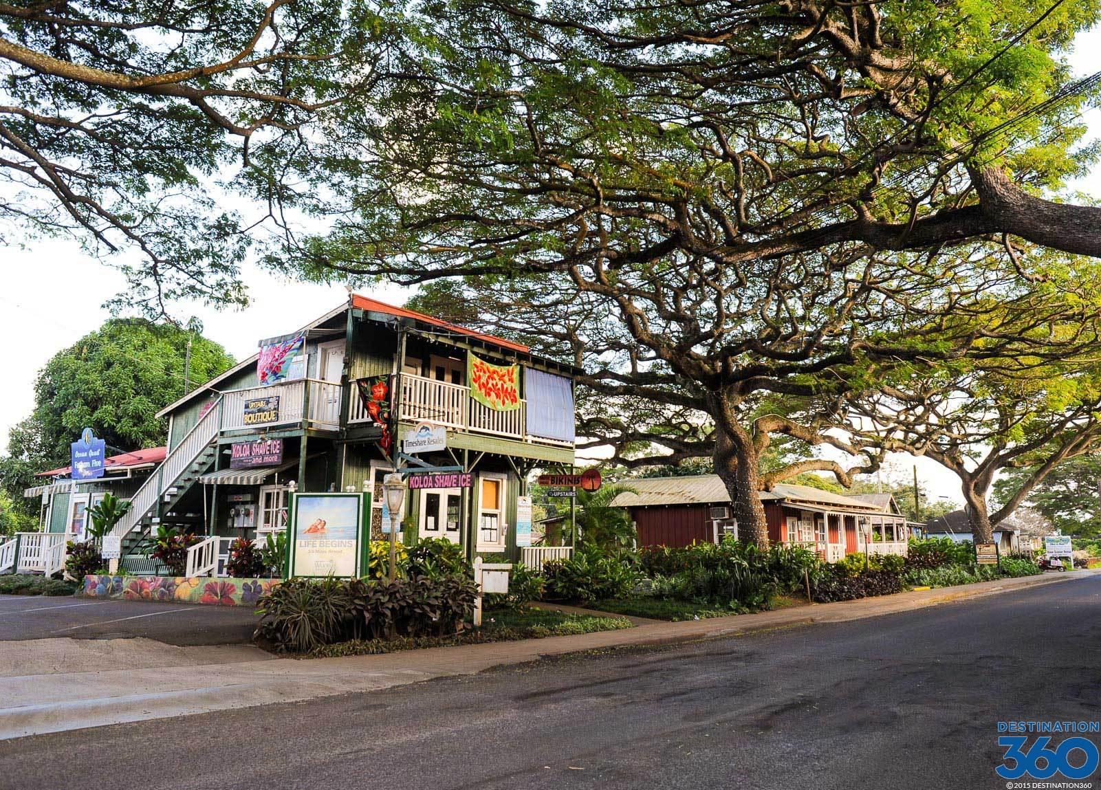 Island School Kauai Hawaii