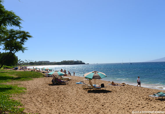 Best Time to Visit Maui