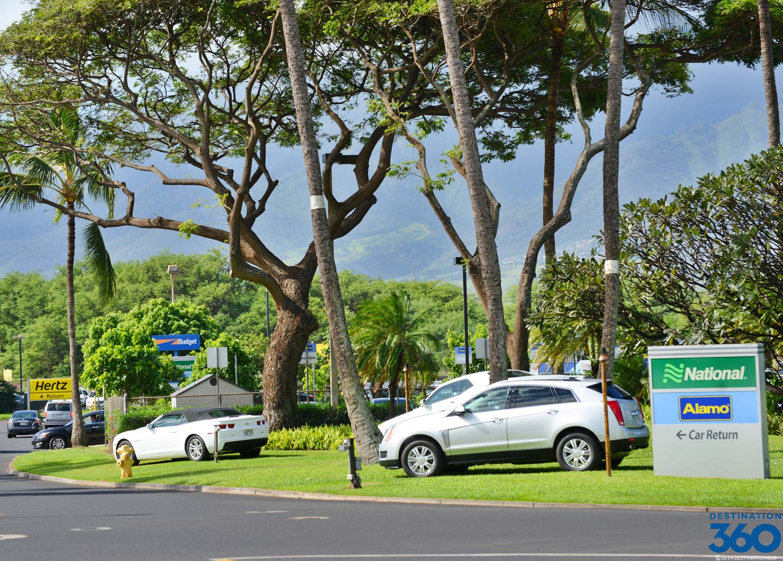 Cheap Maui Airport Car Rental