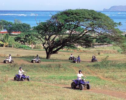 Cheap Dole Plantation Tours