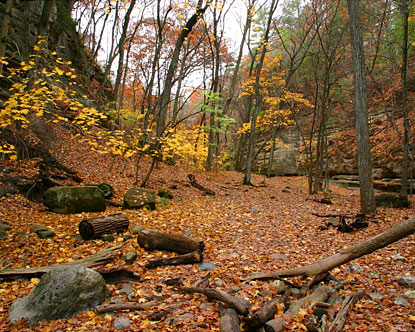 Shawnee national forest campgrounds shawnee national forest - Hotels near garden of the gods illinois ...