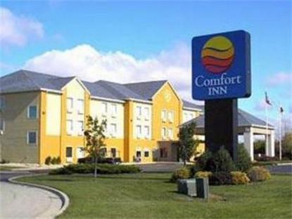 Comfort Inn Mendota