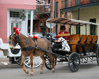 Tours in New Orleans