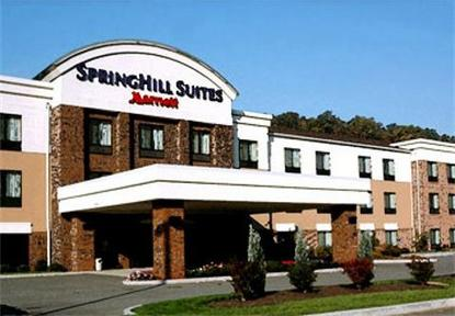 Springhill Suites By Marriott Prince Frederick