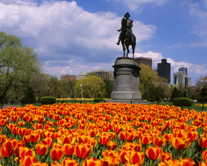 http://www.destination360.com/north-america/us/massachusetts/images/s/boston-common.jpg
