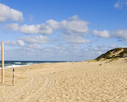 Martha S Vineyard Beaches Best Beaches On Martha S Vineyard