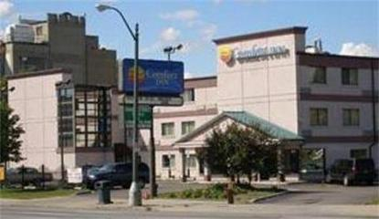 Comfort Inn Downtown   Detroit