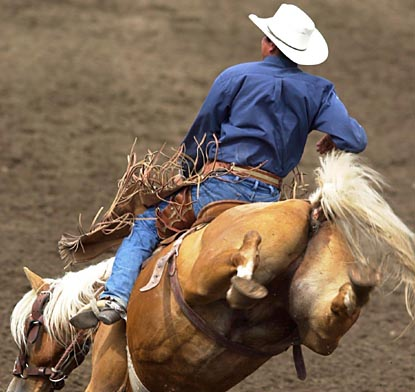 Las Vegas Rodeo Nfr Rodeo Tickets