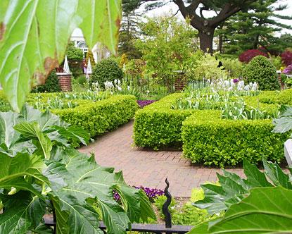 Incroyable Bronx Botanical Garden