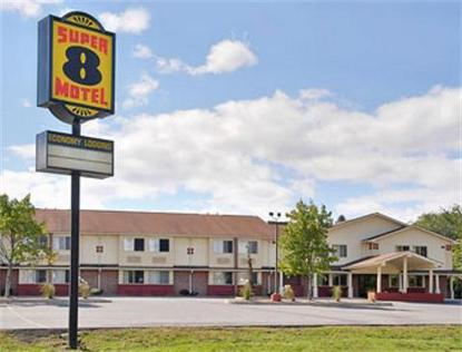 Super 8 Motel   Kingston