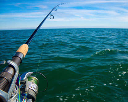Lake Erie Fishing Lake Erie Fishing Charters