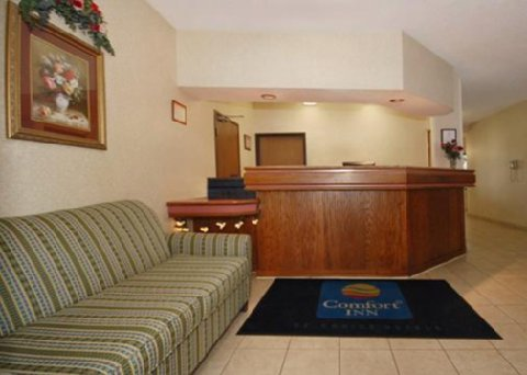 comfort inn marion marion deals see hotel photos. Black Bedroom Furniture Sets. Home Design Ideas