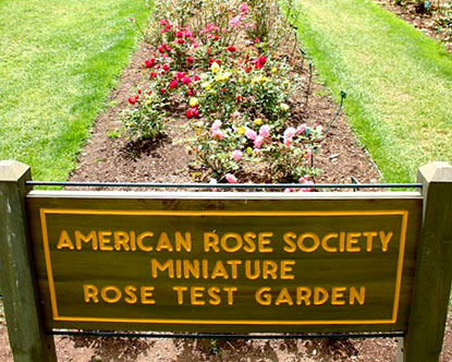 Portland Rose Garden International Rose Test Garden