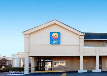 Comfort Inn North Bend