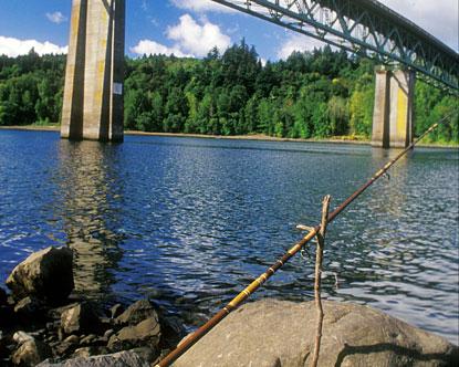 Portland fishing willamette river fishing in portland for Fishing in portland oregon