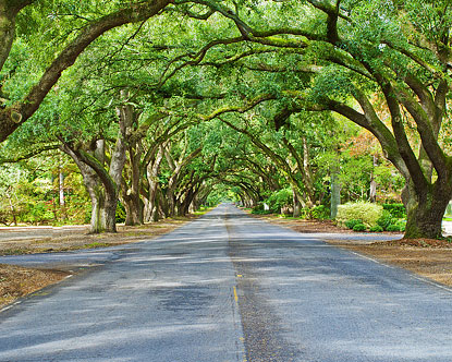 the city of aiken south carolina is located in the southwest part of ...