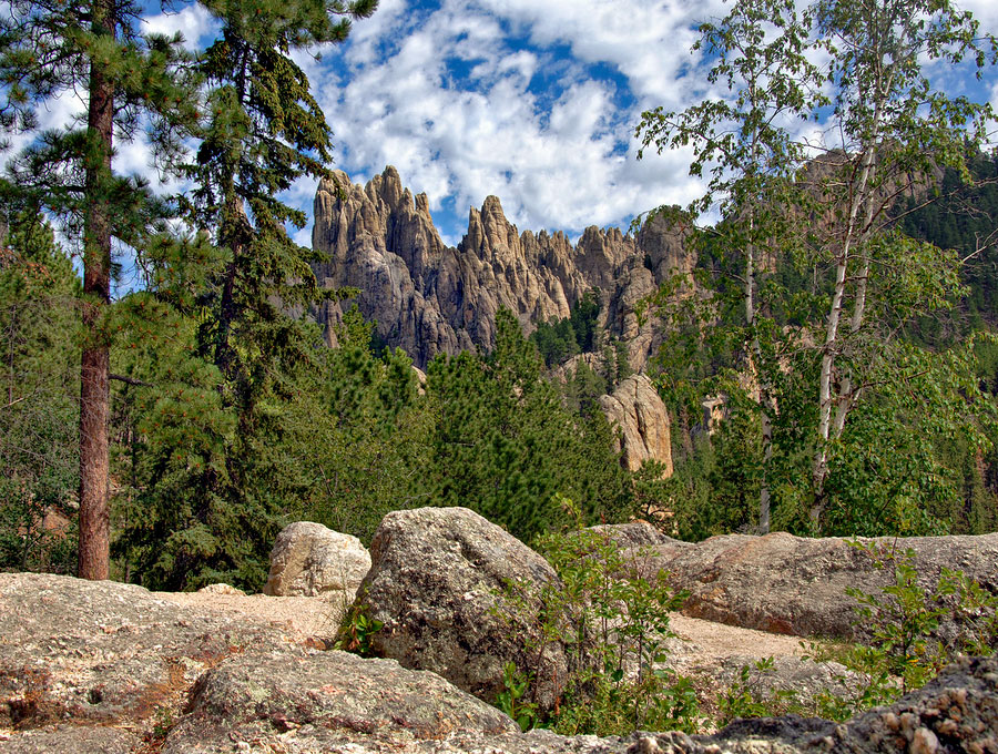 Black Hills South Dakota Black Hills National Forest