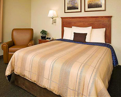 Bargains on Hotels in Dallas