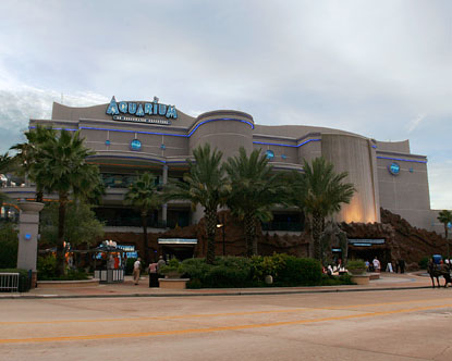 Houston Aquarium Virtual Tour