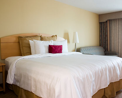 San Antonio Cheap Hotels