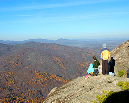 Top Things To Do in Virginia