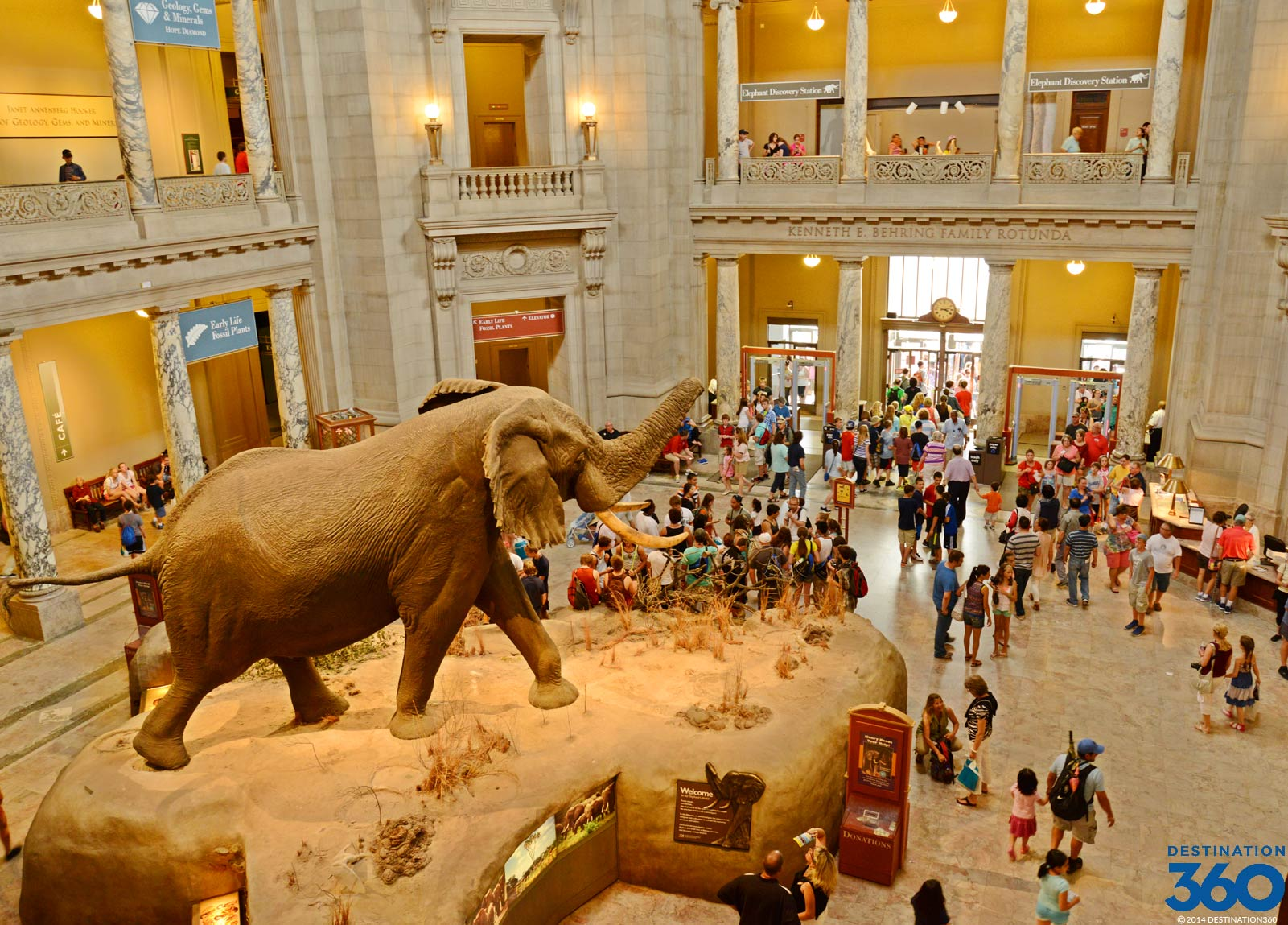 Smithsonian Museum Of Natural History National Museum Of