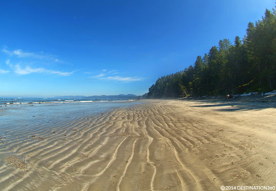 Cape Alava Beach