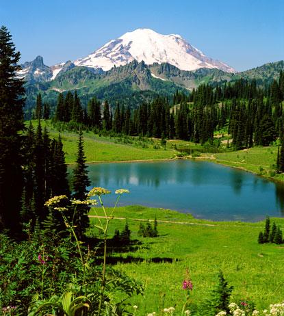 Mt Rainier Mount Rainier National Park