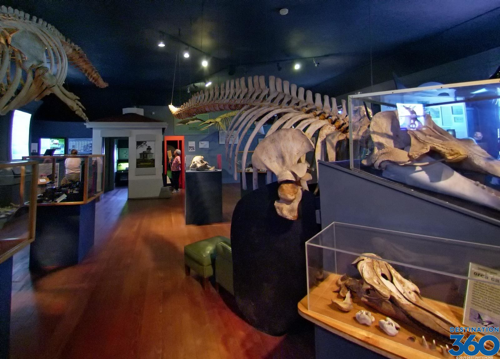 Museums Virtual Tour