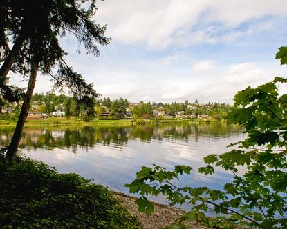 Seward Park Seattle Lake Washington